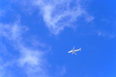 8896699飛行機.jpg