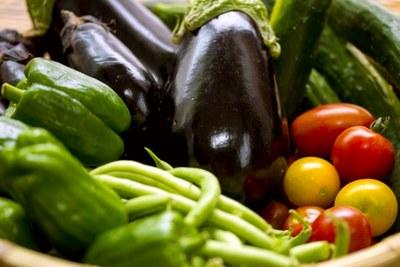 a52931357cca122e3121581a84f2c386野菜.jpg